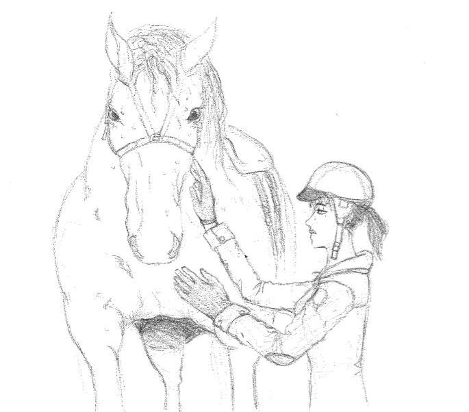 dessin magnétisme cheval
